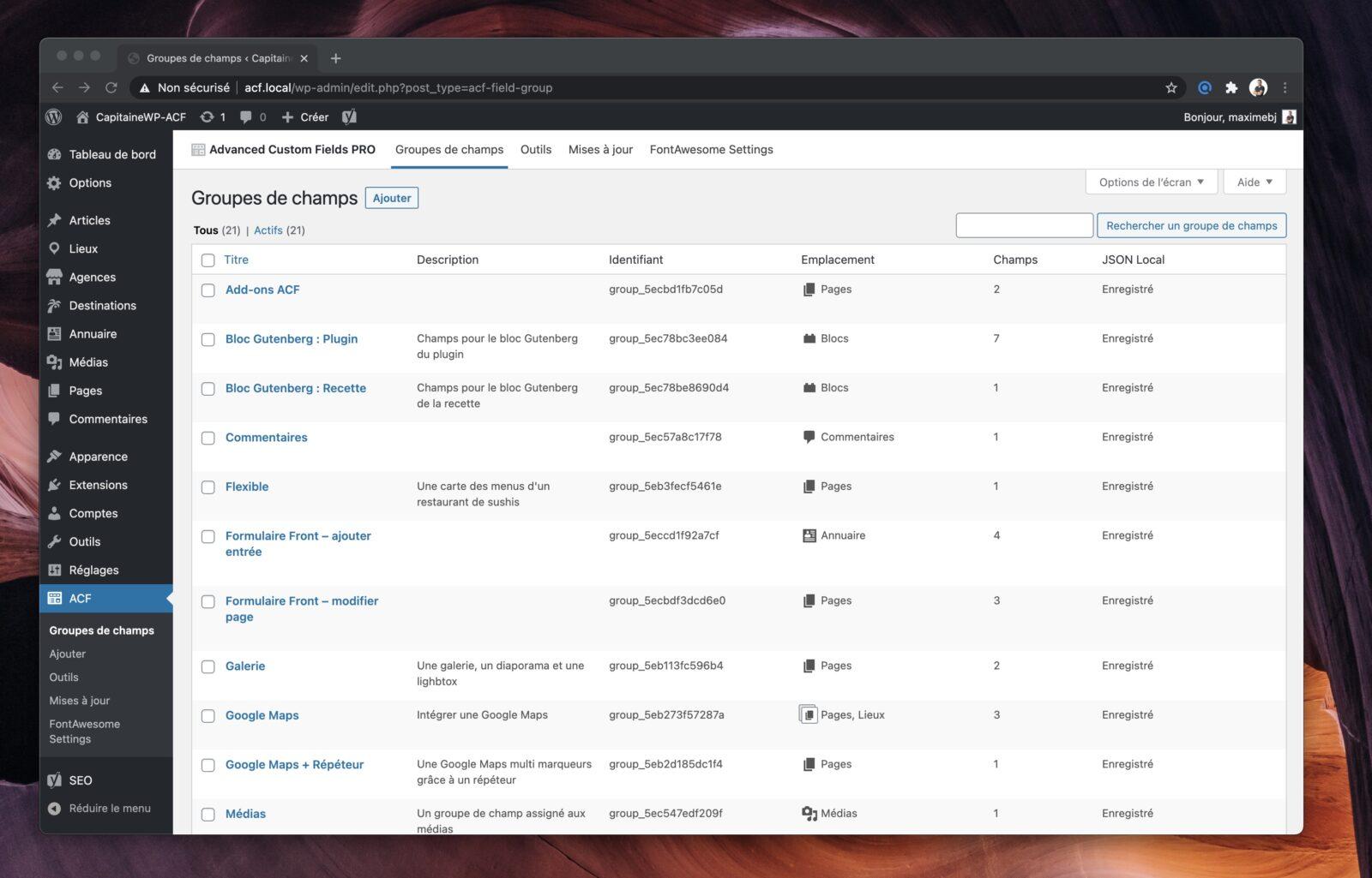 Capture d'écran de la liste des groupes de champs ACF, ainsi que leurs descriptions respectives