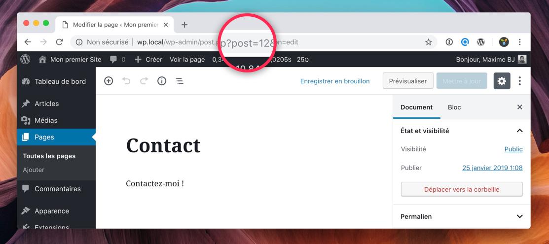 Récupérer l'identifiant d'une publication dans WordPress