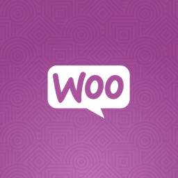 Développer avec WooCommerce