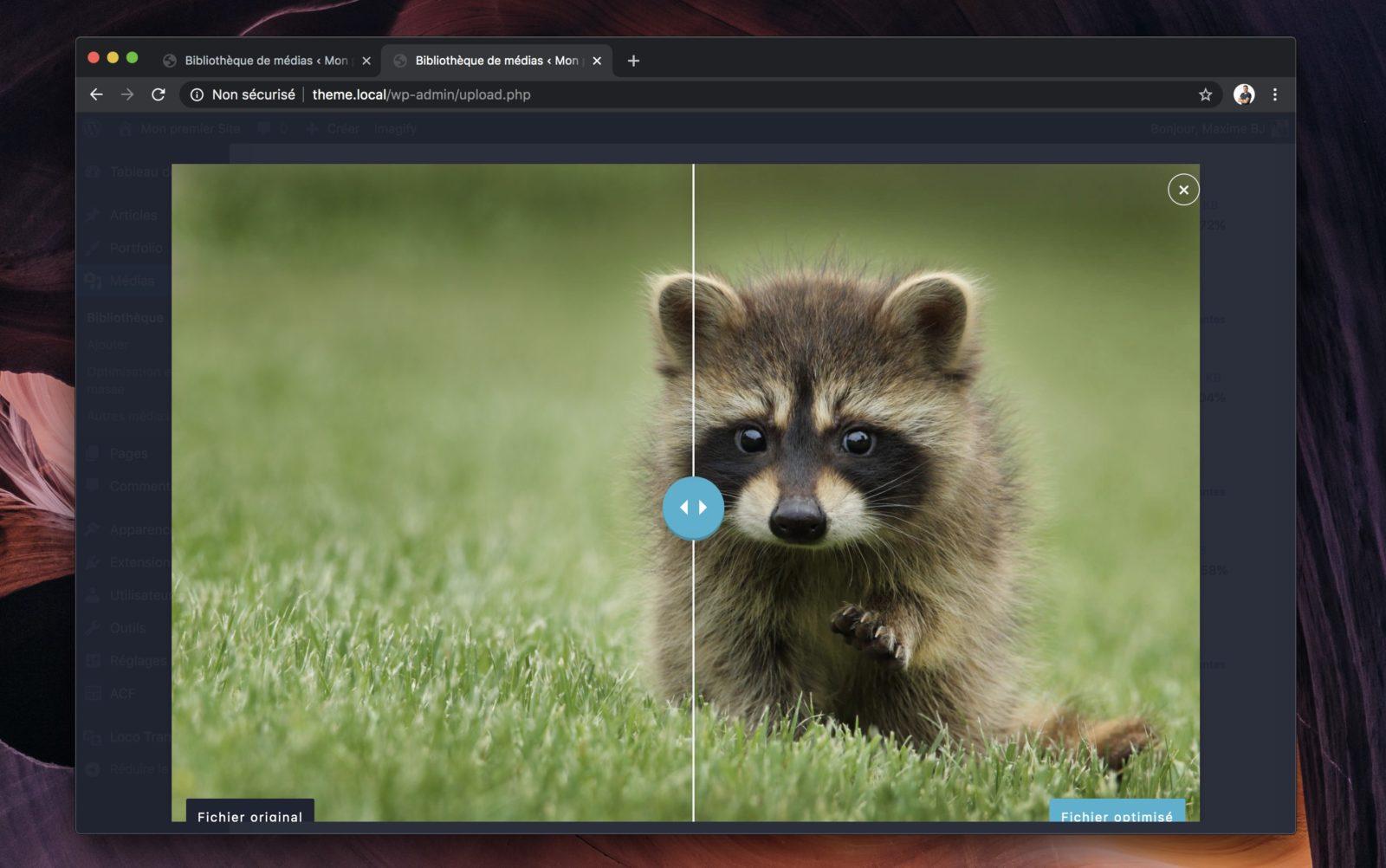 Capture d'écran du comparateur d'image Imagify : à gauche, l'image originale, à droite l'image optimisée