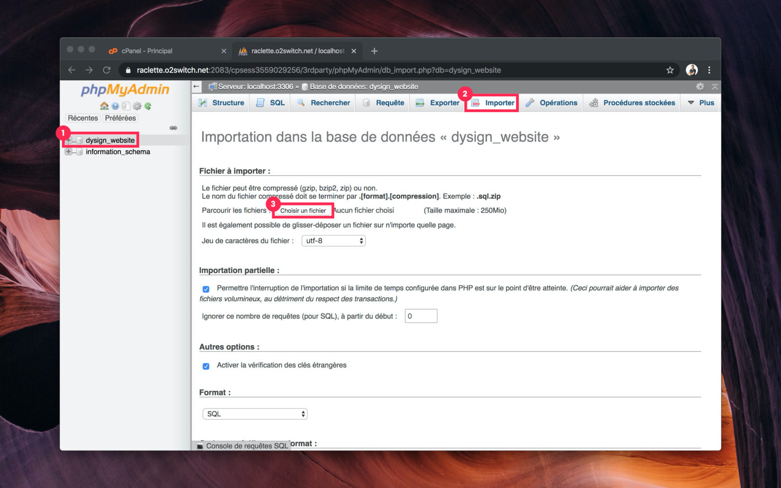 Capture d'écran de phpMyAdmin pour importer la base en ligne