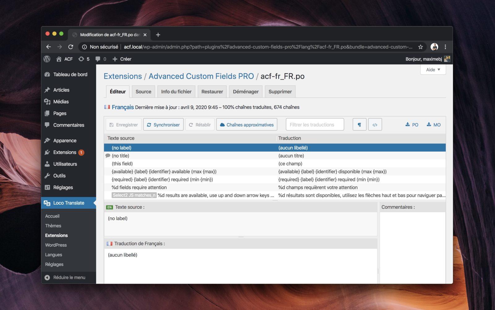 Capture d'écran de l'extension Loco Translate dans WordPress