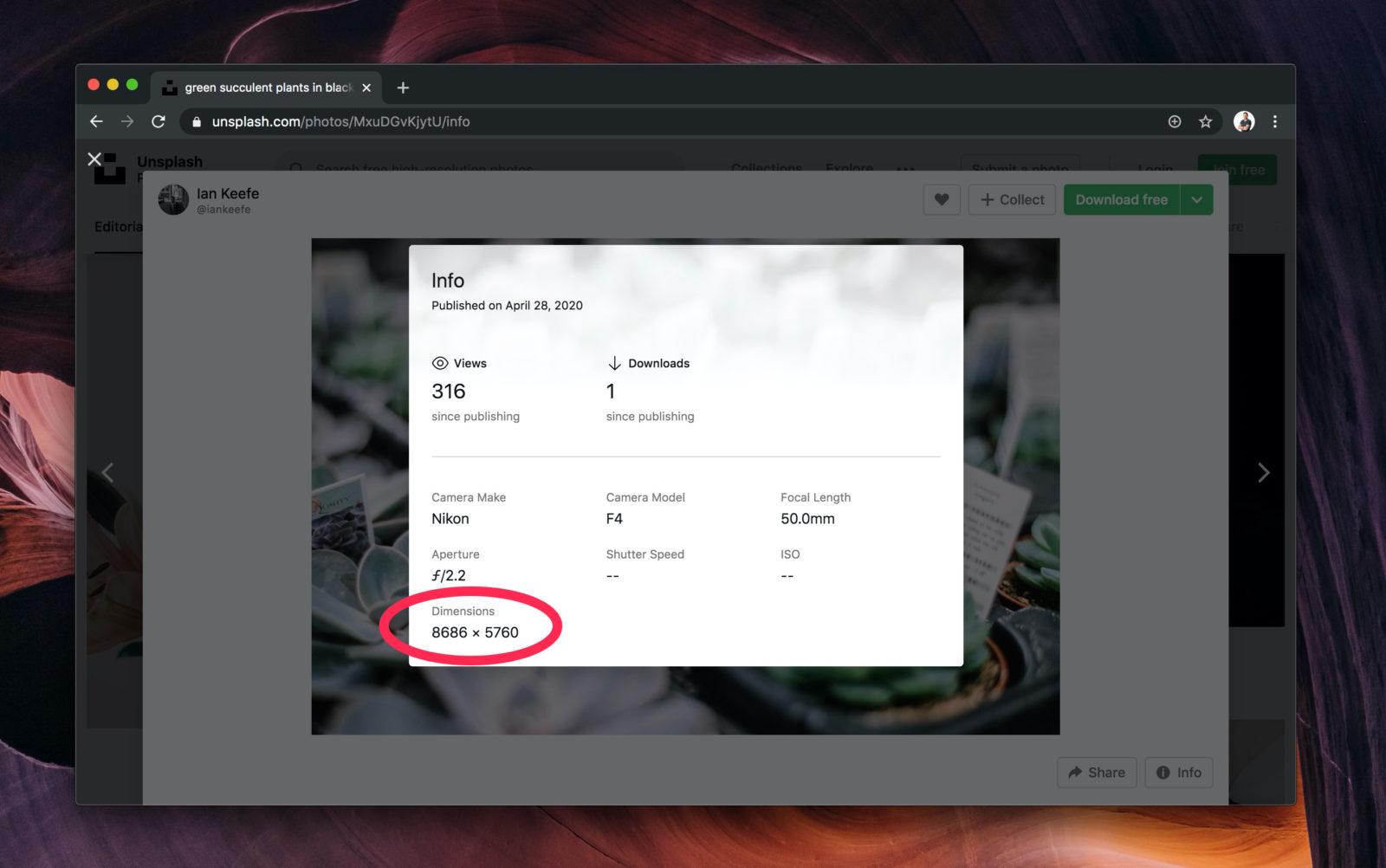 Capture d'écran du site Unsplash qui affiche une image de plus de 8000px de large
