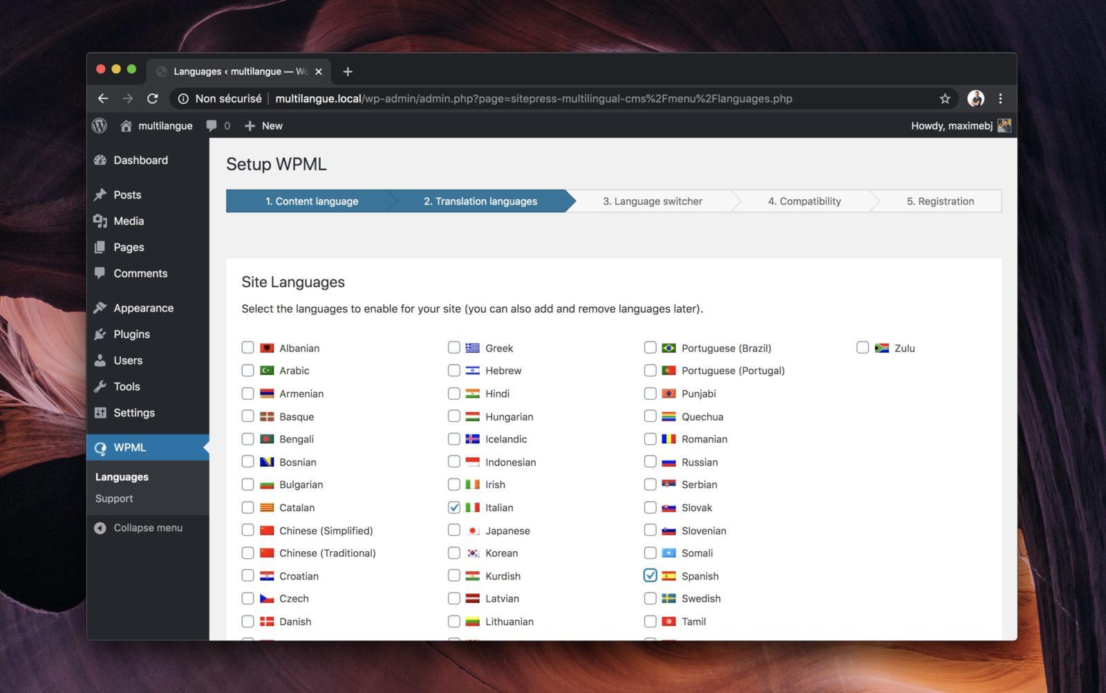 Capture d'écran de l'interface d'installation de WPML