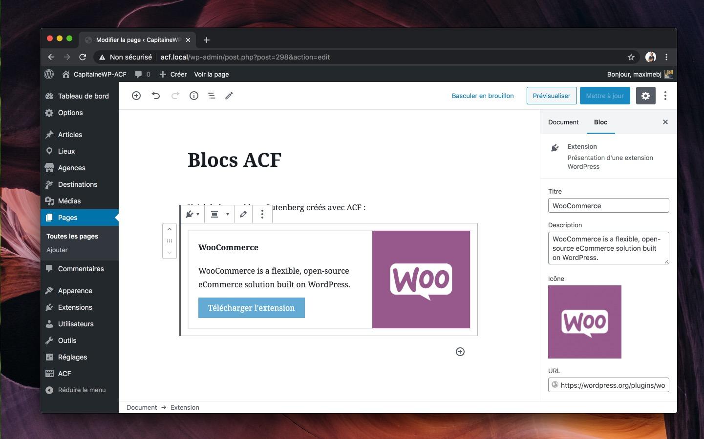 Le bloc apparaît dans l'éditeur, avec son aperçu à gauche et les champs ACF à droite
