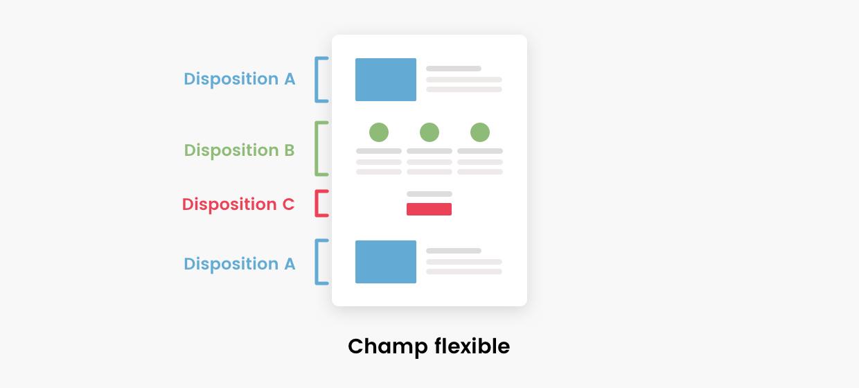 Schéma de dispositions d'un champ flexible d'ACF