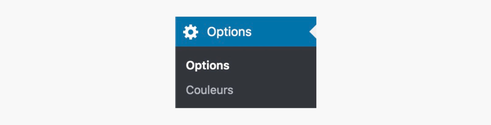 Le menu d'options dans WordPress