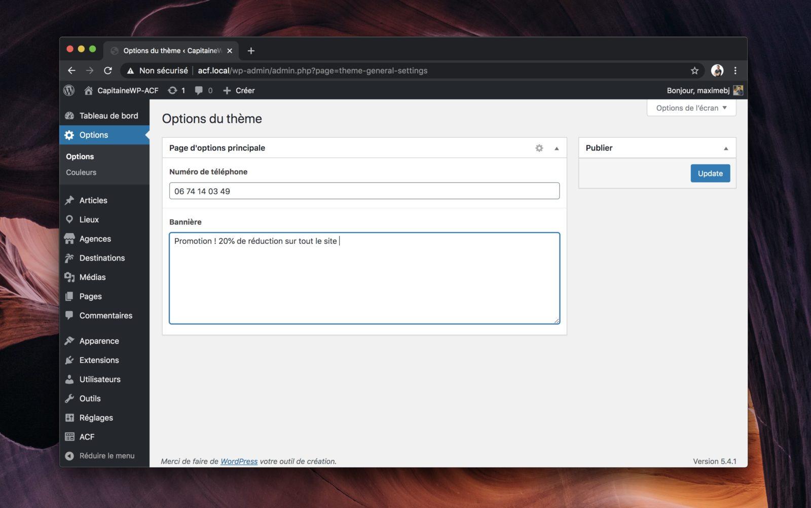 Capture d'écran d'une page d'options réalisée avec ACF