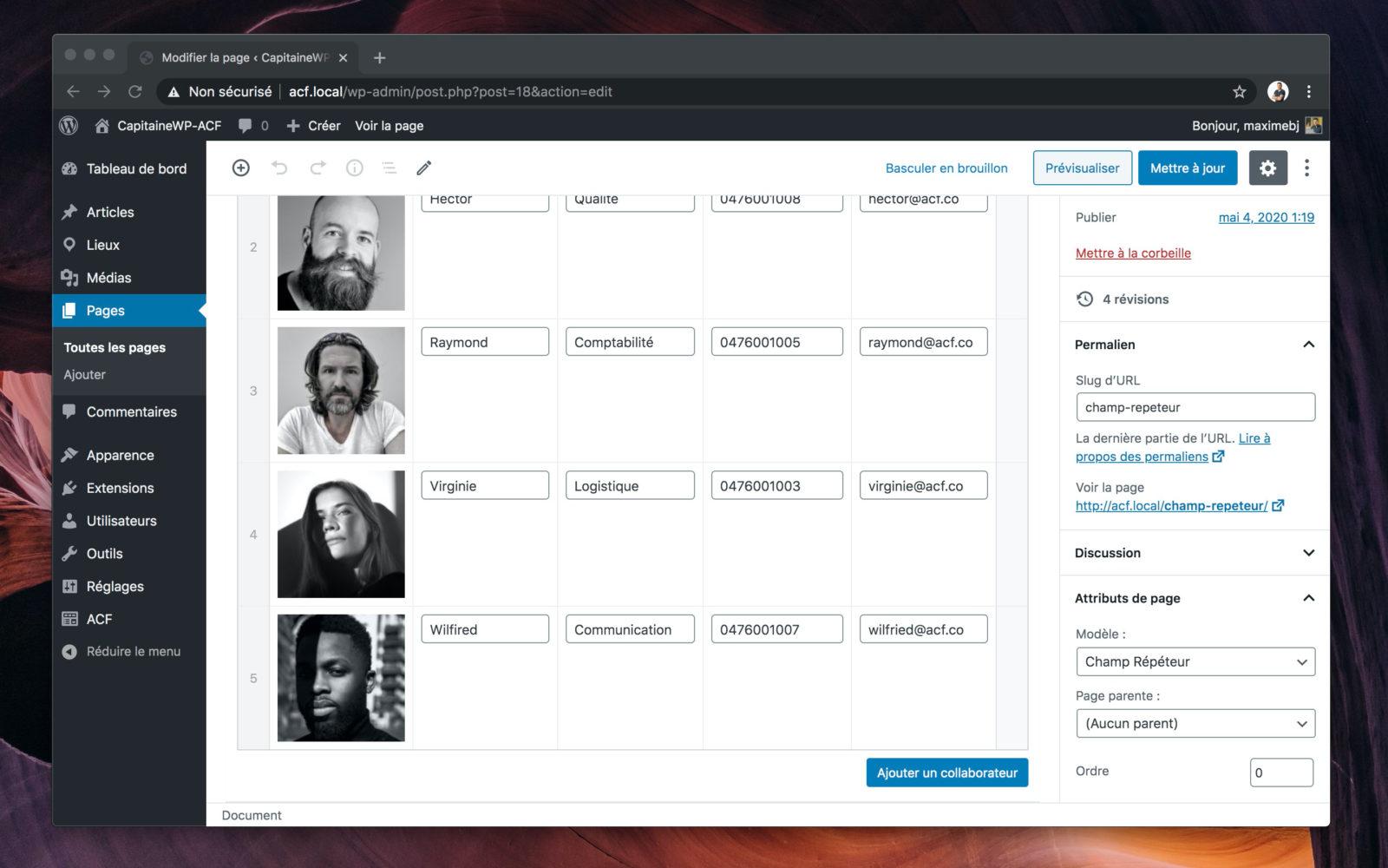 Capture d'écran du champ répéteur dans WordPress