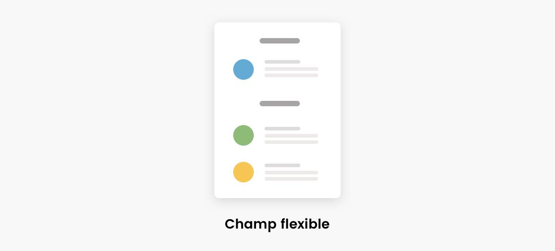 Schéma de représentation du champ flexible