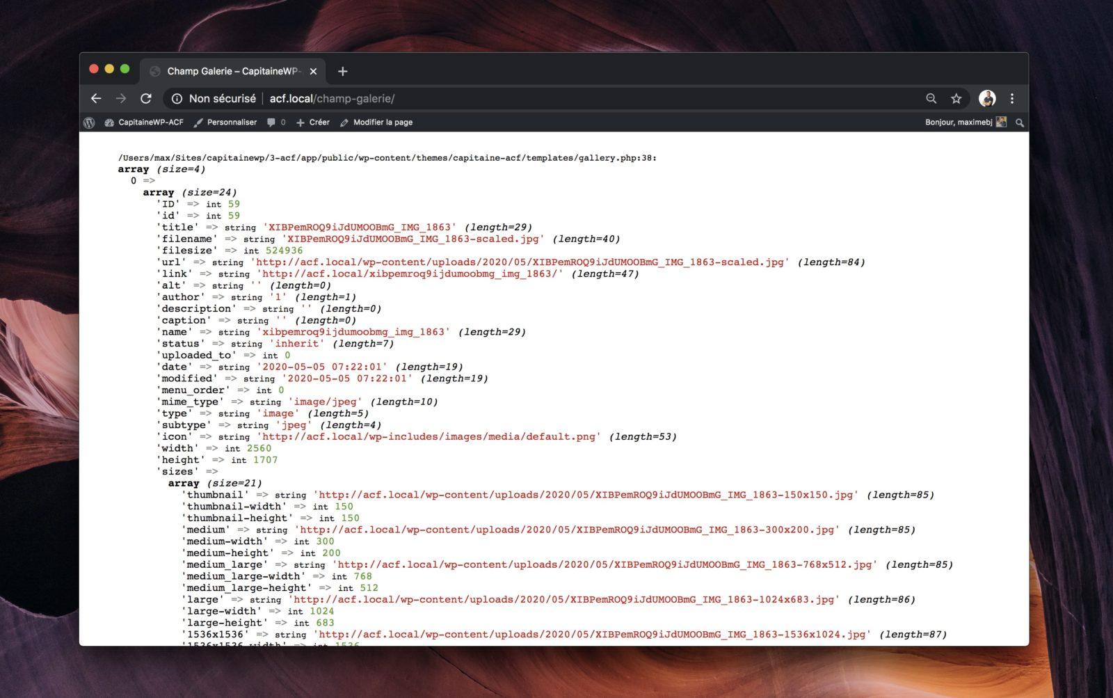 Capture d'écran des données renvoyées par la galerie ACF